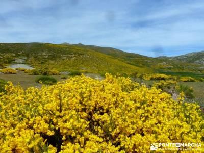 Pico del Zapatero, Sierra de la Paramera; viajes programados por españa; single madrid grupos